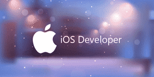 Logo Partner Ios Developer Hvsc 2.png