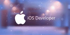 Logo Partner Ios Developer Hvsc 2.png